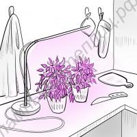 """Настольная LED Grow лампа для растений """"Хатиса"""""""