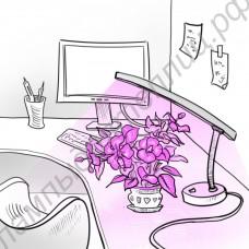 """Лампа настольная для досвечивания цветов """"Альферац"""""""